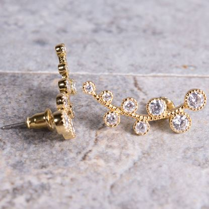 Picture of Ear Crawler Vine Earrings - Gold