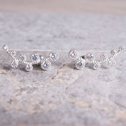 Picture of Ear Crawler Vine Earrings - Silver