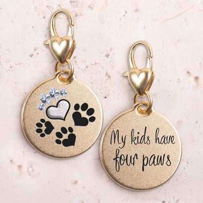 Picture of 4 Paws Gold 2-Tone Medallion