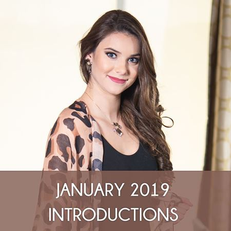 Picture for category JANUARY 2019 INTRODUCTIONS