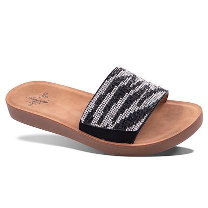 Picture of Celeste Animal Glitter Slide 6-10 Size Run A (9 Pack) - Zebra