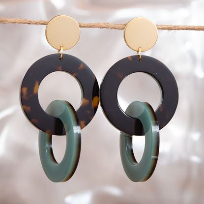 Picture of Double Link Drop Earrings - Sage/Brown